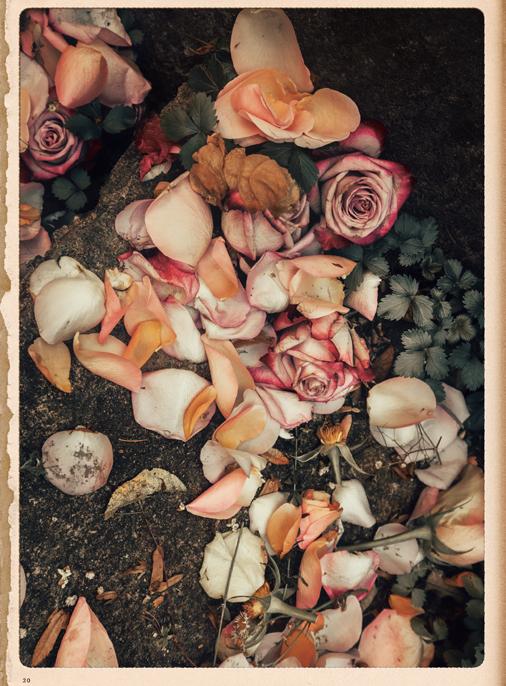 Katalog - Lena Hoschek - SS19 - Tradition - Bild-20