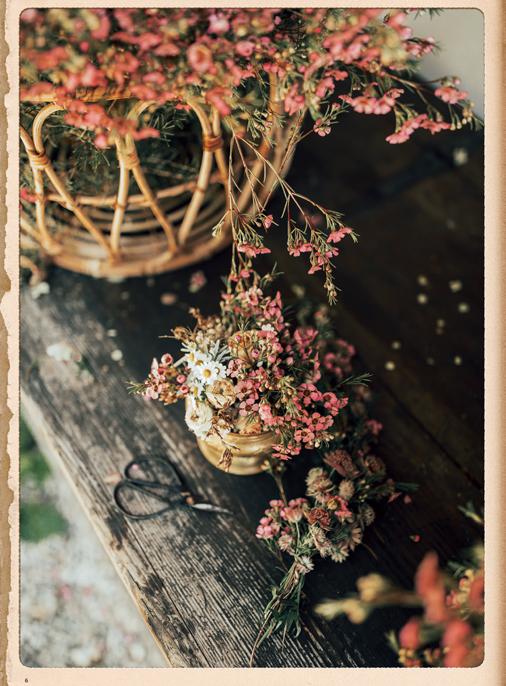 Katalog - Lena Hoschek - SS19 - Tradition - Bild-6